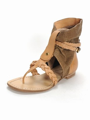 Ripicca Gauze Gladiator - The Gladiator Shoe