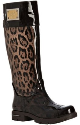 Dolce &amp; Gabbana brown leopard patent trim tall rain boots - Fall is Purring for Leopard Print Accessories 