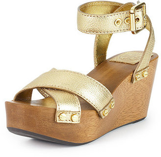 Metallic Risley Clog - Chic and Easy Clogs