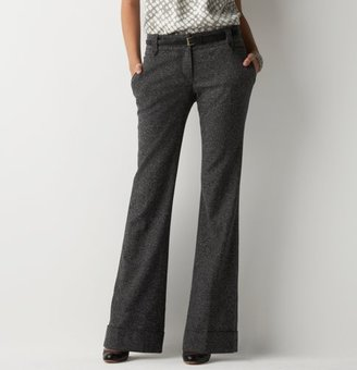 Ann Taylor LOFT Petite Tweed Pants Have Arrived!
